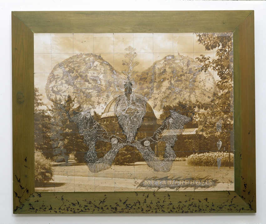 "Gerry Craig. ""Eve as Invertebreate I"". Digital Photo on Canvas, Scratch Drawing, Etched Glass, Stitching, Burned Wood"
