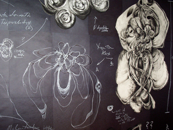 Diagrams, charcoal, chalk and pastel on paper, 2006 by Visiting Artist Sara Schneckloth
